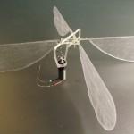 """Insectă """"tipărită"""" 3D"""